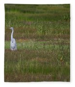 Egrets In A Field Fleece Blanket