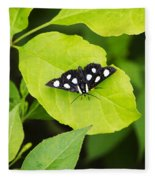 Eight Spotted Forester Fleece Blanket