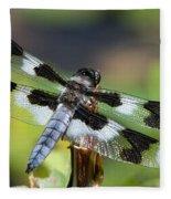 Eight-spotted Skimmer  Fleece Blanket