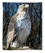 Elder Hawk Fleece Blanket