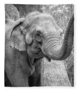 Elephant And Tree Trunk Black And White Fleece Blanket