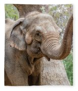 Elephant And Tree Trunk Fleece Blanket