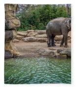 Elephant And Waterfall Fleece Blanket