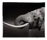 Elephant Bull Drinking Water - Duetone Fleece Blanket