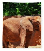 Elephant In Red Clay Fleece Blanket