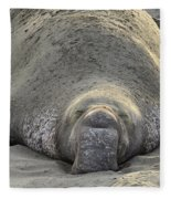 Elephant Seal 3 Fleece Blanket