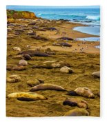 Elephant Seals Near Cambria  Fleece Blanket