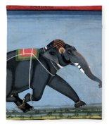 Elephant & Trainer, C1750 Fleece Blanket