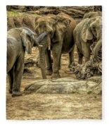Elephants Social Fleece Blanket
