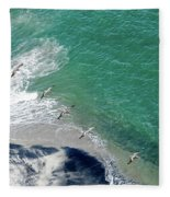 Eleven Brown Pelicans Fleece Blanket