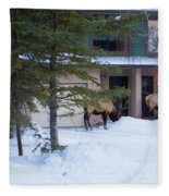 Elk Come Calling Fleece Blanket