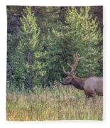 Elk In The Forest Fleece Blanket
