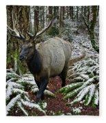 Elk In Winter Fleece Blanket