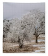 Elm Frosting Fleece Blanket