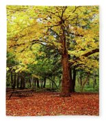 Elora Gorge Campsite In Fall Fleece Blanket