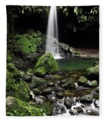 Emerald Pool Fleece Blanket