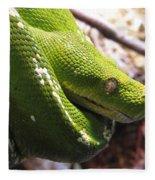 Emerald Tree Boa Fleece Blanket