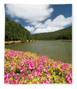 Empadadas Lakes II Fleece Blanket