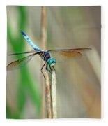 Emperor Dragonfly  Fleece Blanket