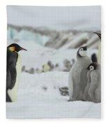 Emperor Penguin Landscape Fleece Blanket