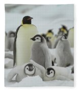Emperor Penguin Pals 2 Fleece Blanket
