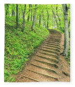 Empire Bluffs Trail Steps In Michigan Fleece Blanket