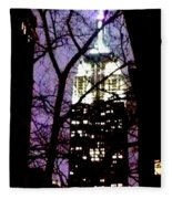 Empire State From Madison Park 1 Fleece Blanket