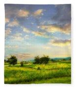 Enchanted Valley Fleece Blanket