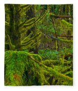 Endless Green Fleece Blanket