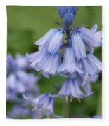 English Bluebell Fleece Blanket