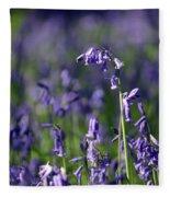 English Bluebells In Bloom Fleece Blanket