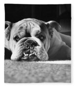 English Bulldog Fleece Blanket