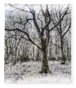 English Forest Snow Art Fleece Blanket