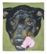 English Staffordshire Bull Terrier  Fleece Blanket