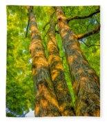 Enlightened Trees Fleece Blanket