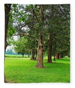Entrance To The Past Fleece Blanket