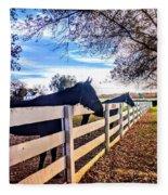 Equine Profiles Fleece Blanket