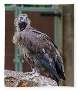 Eurasian Black Vulture 1 Fleece Blanket