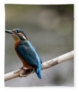 Eurasian Kingfisher Fleece Blanket
