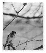 European Goldfinch 1 Fleece Blanket