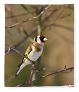 European Goldfinch 2 Fleece Blanket