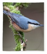 European Nuthatch Fleece Blanket