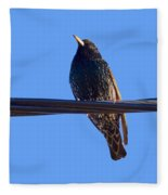 European Starling Trasparent Background Fleece Blanket