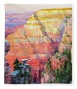 Evening Colors  Fleece Blanket