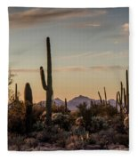Evening In The Desert Fleece Blanket