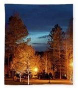 Evening In The Neighborhood Fleece Blanket