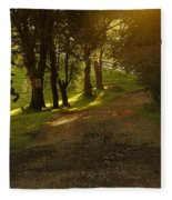 Evening Path Fleece Blanket