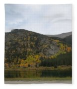 Ever Day Should  Be A Holiday For A Drive Fleece Blanket