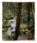 Evergreen Stream Ravine Fleece Blanket