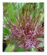 Evolving Allium Fleece Blanket